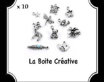 SILVER MIXED 10 INSECTS ANIMALS METAL STAR BEAD CHARMS