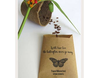 Wedding Favor Wildflower Seeds, Organic Milkweed Flower Seed Favors, Save the Monarch Butterfly Guest Favors / Set of 10 Seed Packs (OTM02)