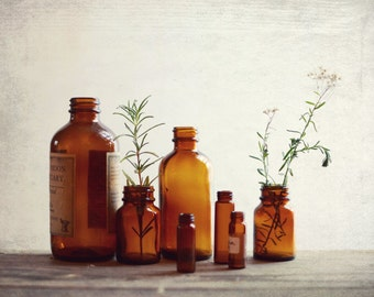 "Rustic still life photography vintage bottles herbalism fixer upper rustic farmhouse kitchen wall art ""Apothecary"""