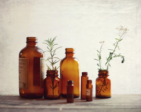 Rustic Still Life Photography Vintage Bottles Herbalism Fixer