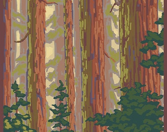 Big Sur, California - Redwoods (Art Prints available in multiple sizes)