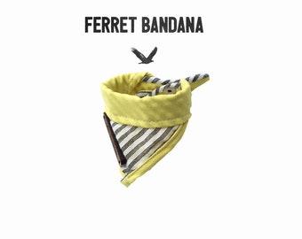 Ferret Bandana, Gage Ferret Bandana, Ferret scarf, Ferrets