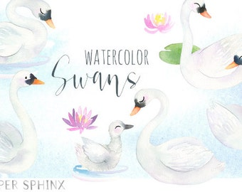Watercolor Swans Clipart |  Bird Nursery Art - Mommy and Baby Swan - Swans and Cygnet - With Lilypad, Water Lily - Digital Instant PNG files