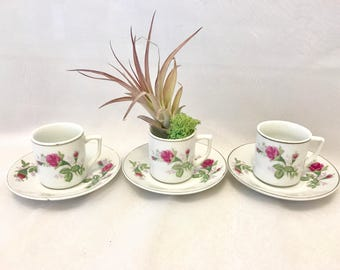 3 Mini tea cups and saucers with rose prints, for succulents, air plants, plants, shabby chic gifts