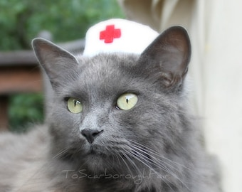 Nurse Cat Hat - Vintage Style Pet Nurse - Pet Halloween Costume - Cat Photo Prop - Guinea Pig Hat - Bearded Dragon Hat - Ferret Hat