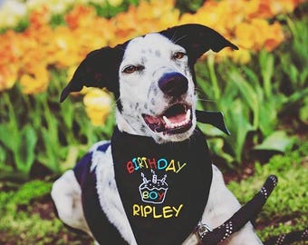 Personalized Birthday Dog Bandana | Reversible Happy Birthday Boy Pet Scarf | Best Custom Bandanas by Three Spoiled Dogs