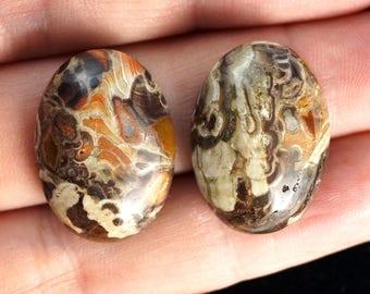 Natural Jasper cabochon stone - set (EA145)