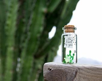 I'm stuck on you. I miss you. You are Succulent. Te quiero. Mensaje en una botella. Miniatura Regalo personalizado. Divertida postal de amor