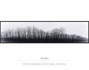 "Rustic Decor, Landscape Photography, Fall Decor, Tree Wall Art, Fine Art Photography, Indiana Panoramic Nature Landscape Print ""Salvation"""