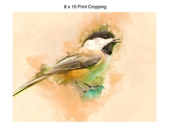 Watercolor Black Capped Chickadee