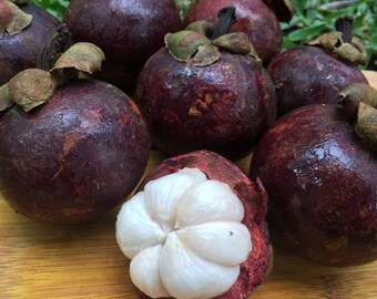 Fresh Mangosteen-2 lbs