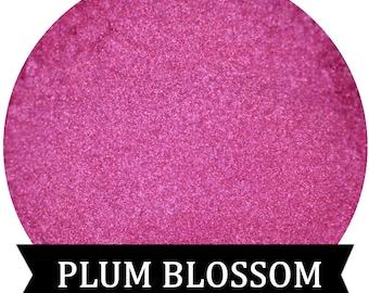 PLUM BLOSSOM  Shimmery Pink Eyeshadow