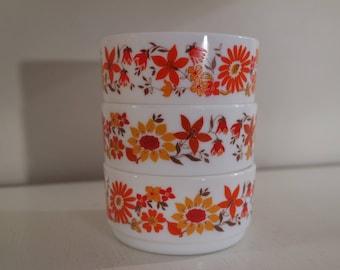 Vintage 60s Lot of 3 Arcopal France orange and red flowers bowls