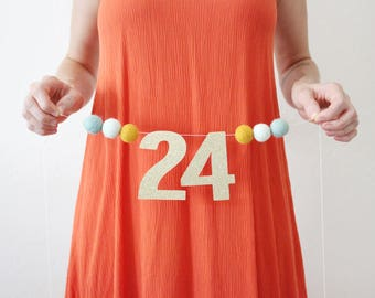 Pregnancy Weekly Banner | Interchangable Weekly Baby Banner | Baby Weekly Pregnancy Banner | Glitter Numbers Banner | Choose Colors