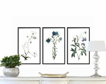 Blue Botanical Prints Set of 3 - Botanical Illustration - Wall Art Prints - Antique Botanical Prints - Large Blue Flowers Wall Art Prints