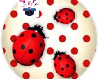 1 cabochon clear 25 mm theme lucky Ladybug