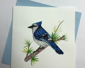 Blue Jay Quilling Greeting Card