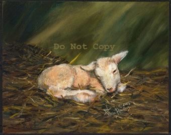 8X10 Painting of a Newborn Lamb
