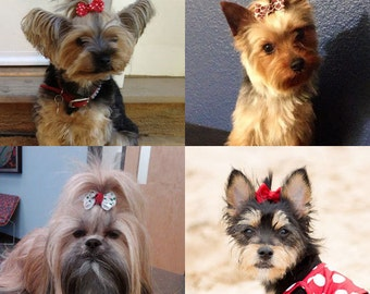 10 Dog Hair Bows Choose Any 10 From Over 100 Colors And
