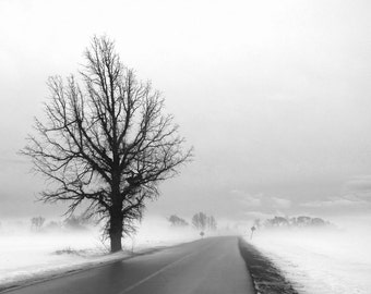 """Landscape photography black and white print tree winter fog nature bare branches minimal - """"On the road"""" 8 x 10"""
