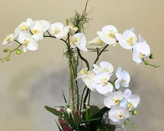 Real Touch Artificial Phalaenopsis Orchid with Greenery in Ceramic Pot