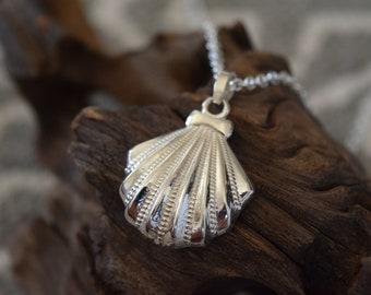 Sea Shell Necklace, Sea Shell Pendant, Silver Sea Shell Necklace, Silver Sea Shell Pendant, Shell Necklace, Shell Pendant, Sea Shell Charm