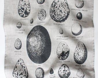 Bird Eggs - Tea Towel