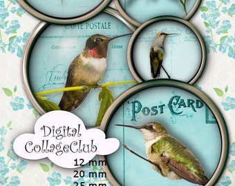 Hummingbirds Figital Collage Sheet 1 Inch (25 mm), 12 mm, 20 mm and 30 mm Digital Images for Jewelry Making, Scrapbooking Images