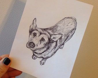"custom 5""x7"" ink penned pet portrait"