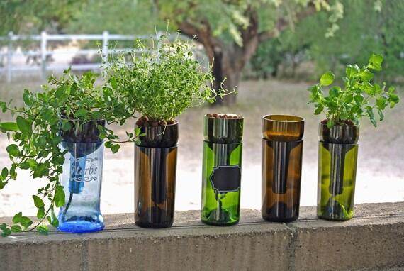 hydroponic garden in wine bottle indoor herb garden wine. Black Bedroom Furniture Sets. Home Design Ideas