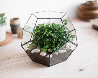 "geometric glass terrarium ""dodecahedron"" - handmade glass terrarium - planter for indoor gardening"