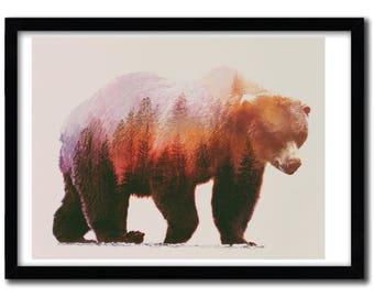 Affiche Brown Bear par Andreas Lie