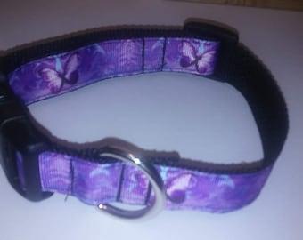 Adjustable purple butterfly dog collar