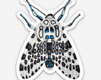 Giant Leopard Moth Sticker