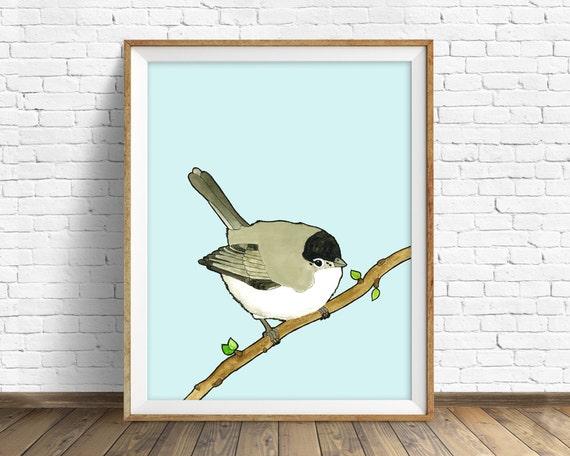 Black Tailed Gnatcatcher - bird, drawing, watercolor, bird print, blue, art print, wall art print, large wall art, print, woodland wall art