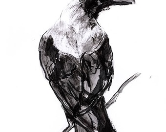 Crow. Raven. Rabe. Digital inj-print of ink original artwork in Munken Fine Art 300g paper