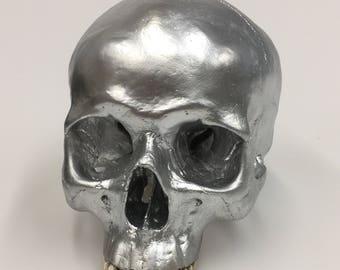 Silver Human Skull Replica