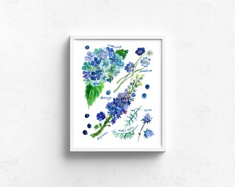 Watercolor Art Giclee Print - Botanical Rainbow series in Blue