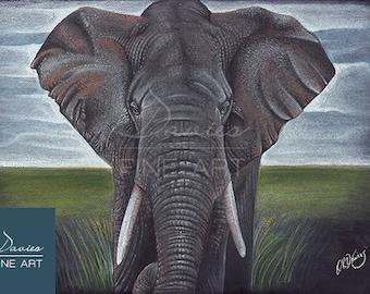 African Elephant Drawing - Elephant Pastel Print, Elephant Art Decor Prints, Elephant Wall Art, Elephant Giclee Print, Mammal Pastel Drawing