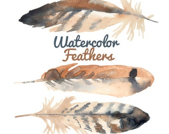 Watercolor Feathers Clip art Clipart bird clip art feathers clipart Digital Download hipster trendy Images Digital Download PNG 300 DPI
