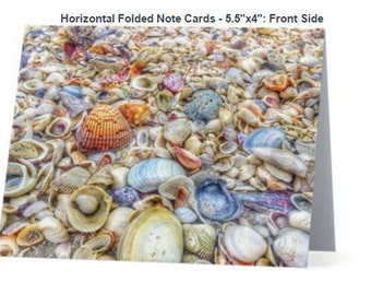 Sea Shell Note Cards, Box of 5 with white envelope
