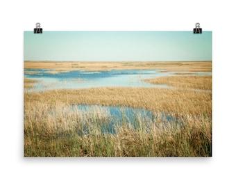 Unframed Poster - My Everglade backyard + Fine Art Photography + Wall Art