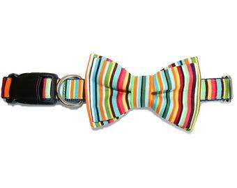 Colorful Birthday Stripe Layered Dog Bow Tie - Optional Matching Dog Collar Dog Leash - Cinco De Mayo - Fun Fetti Stripe