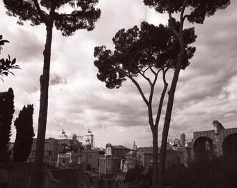 Winter in the Roman Forum monchrome bronze dye faded fine art photography print