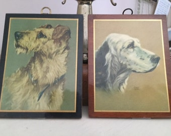 FREE SHIPPING - Pair of Vintage Dog Plaques, Setter, Terrier