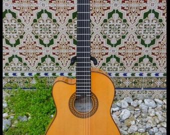 Guitarra Valeriano Bernal modelo Aire