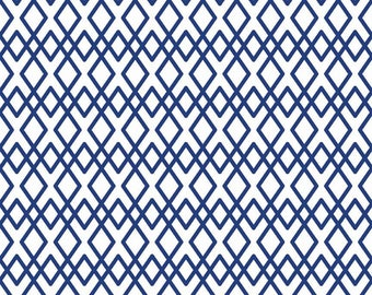 Lula Magnolia Lattice in Blue - 1 Yard - RB 3774-BLUE - The Quilted Fish - Riley Blake Designs