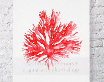 Sea Coral in Ruby II Print