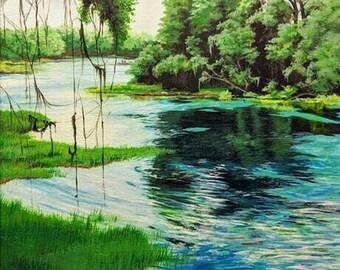 """Rainbow River, FL 8x10"""" Print"""