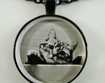 CURIOUS TABBY Necklace -- Playful Tabby checking out the scene,  For cat lovers